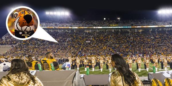 Missouri Tigers Gigapixel Fan Photo - Powered by Blakeway Panoramas